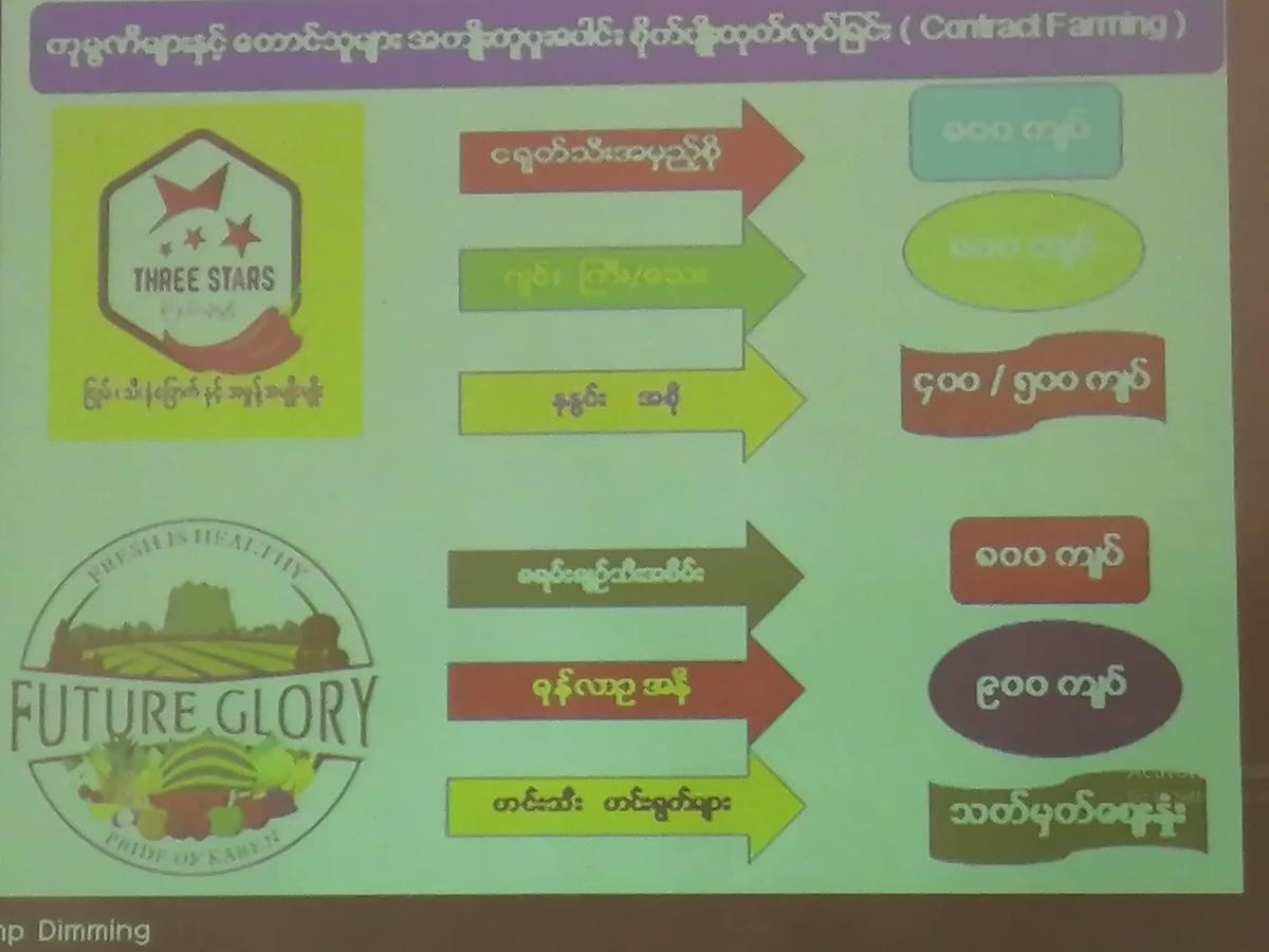 スライドの画像。
