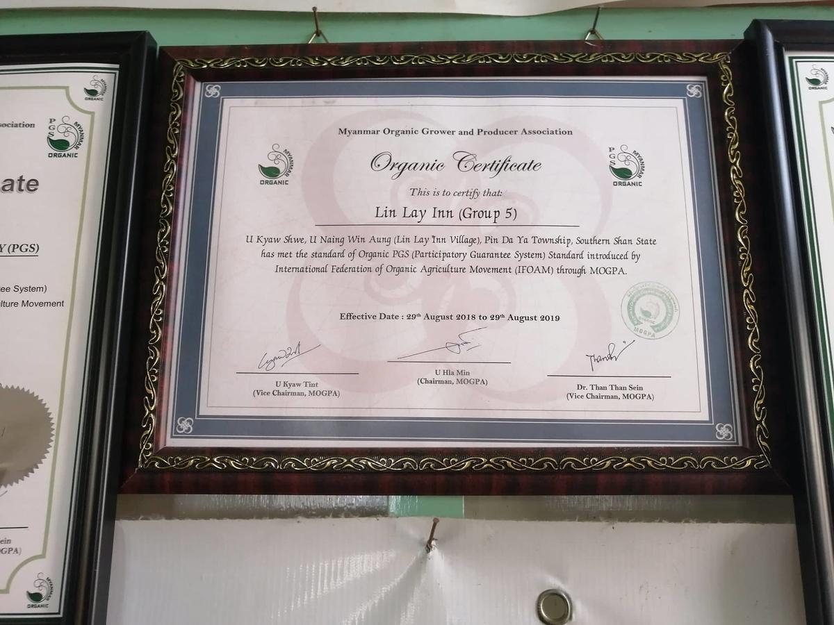 額の中にPGS認証の証書が掲示されている