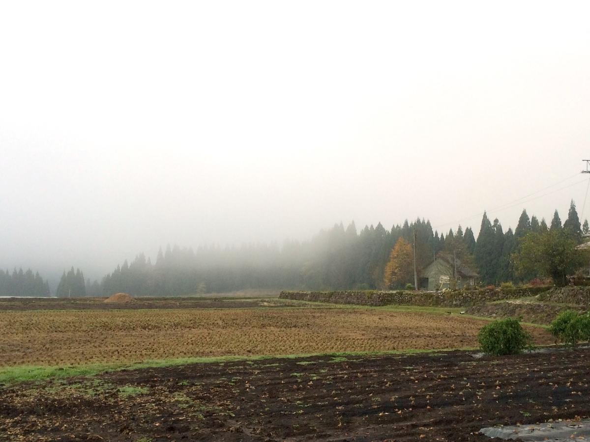 霧のイメージ