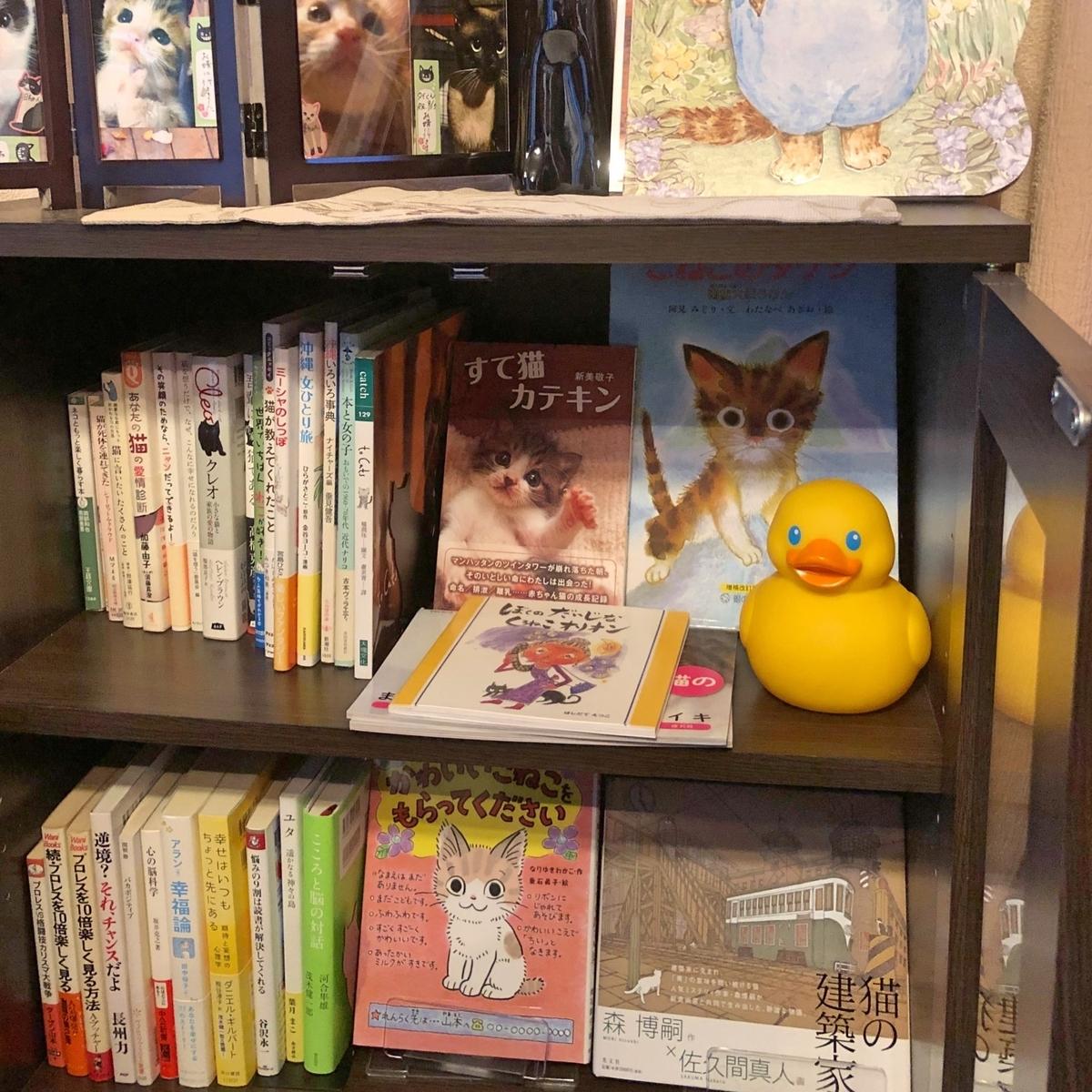 本棚の中のイメージ