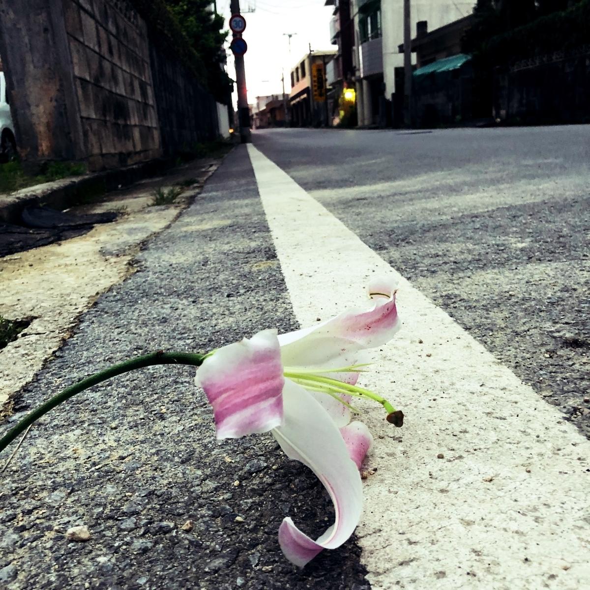 道端に落ちた花 image