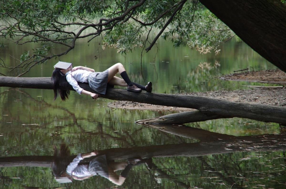 睡眠と記憶の湖のイメージ