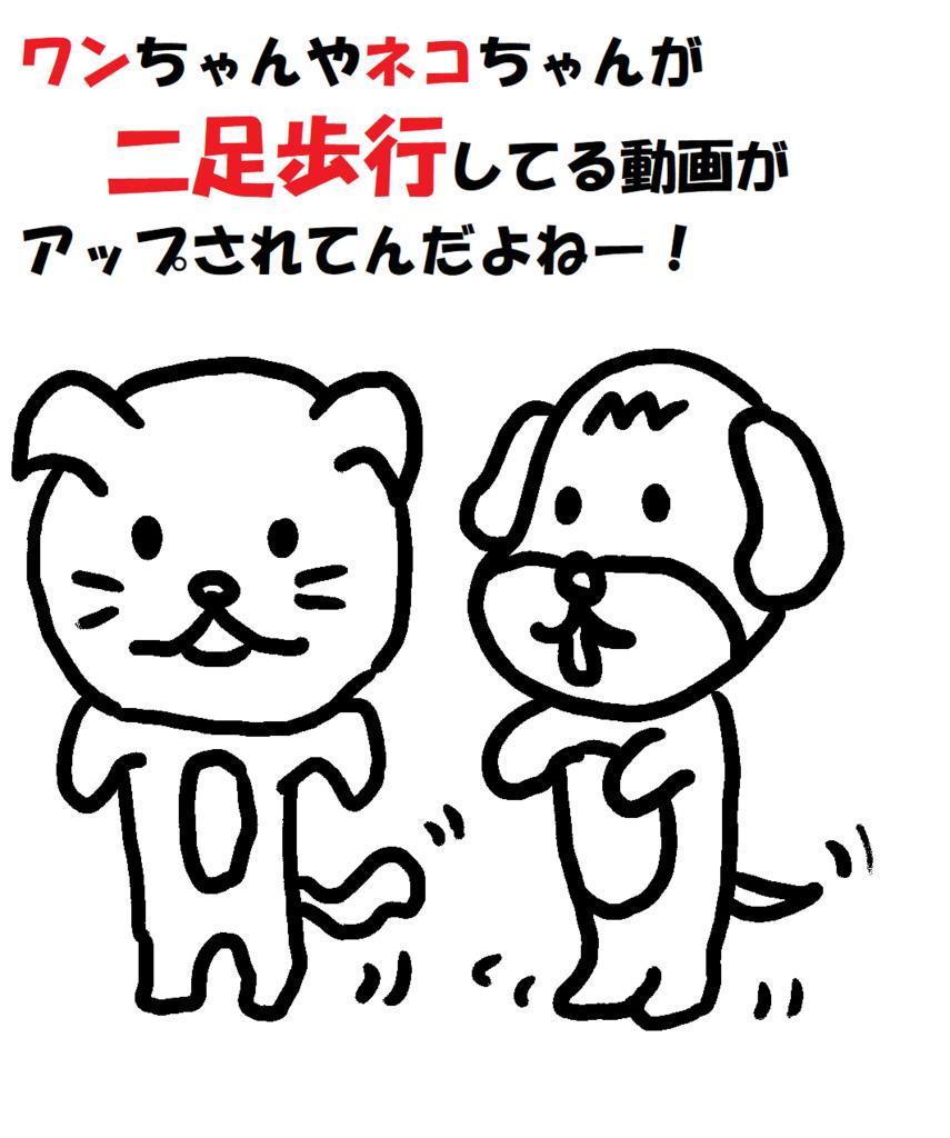 f:id:nichan-nichan:20180630004652j:plain