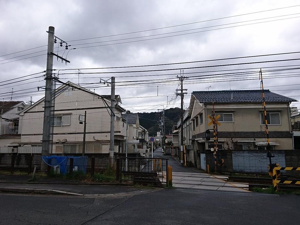 f:id:nichijo-ni-ikiru:20190305014147j:plain