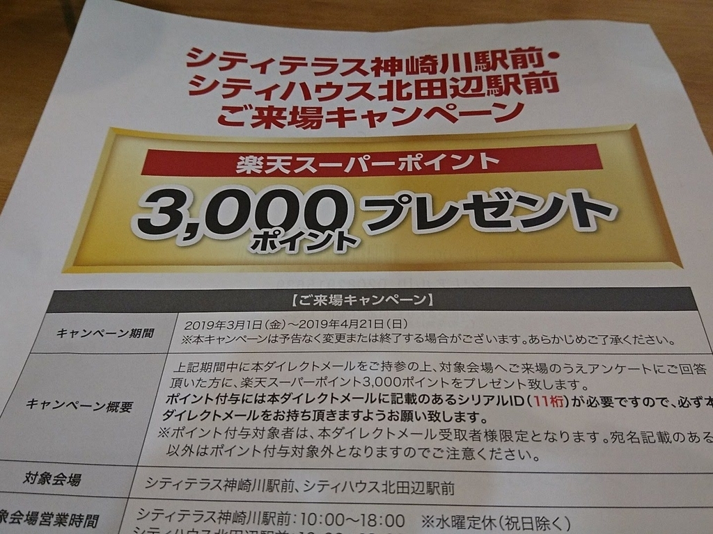 f:id:nichijo-ni-ikiru:20190310021039j:plain
