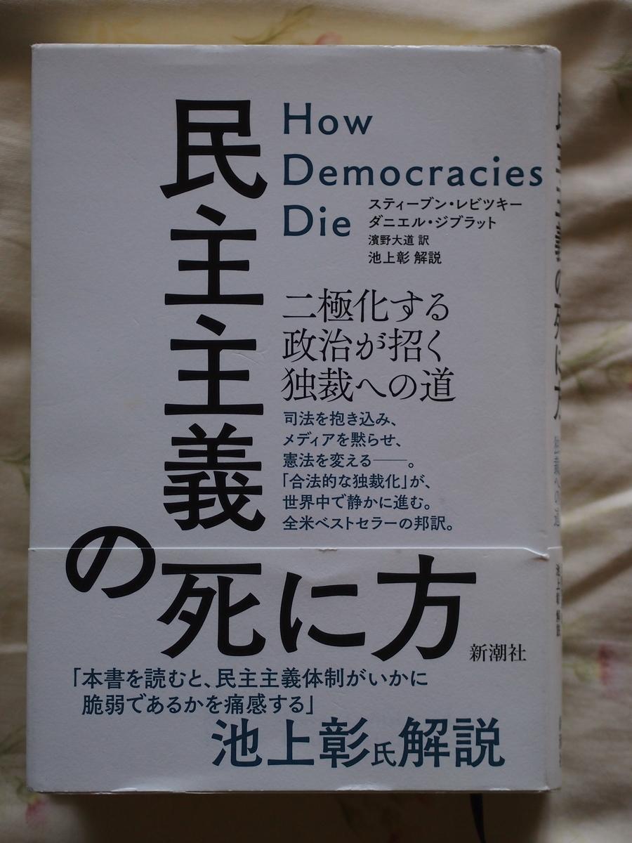 f:id:nicky-akira:20190403071101j:plain