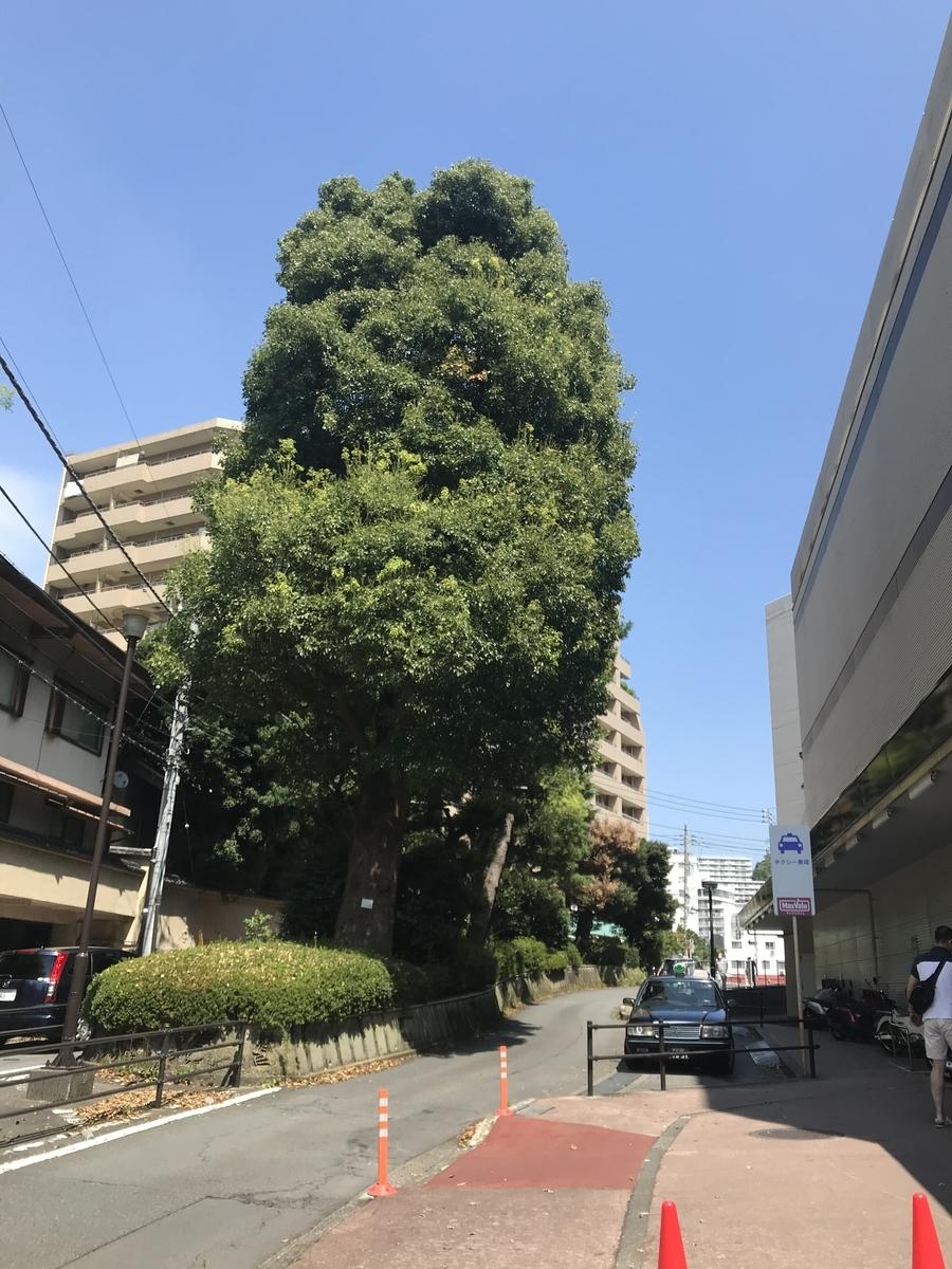 f:id:nicky-akira:20200907102237j:plain