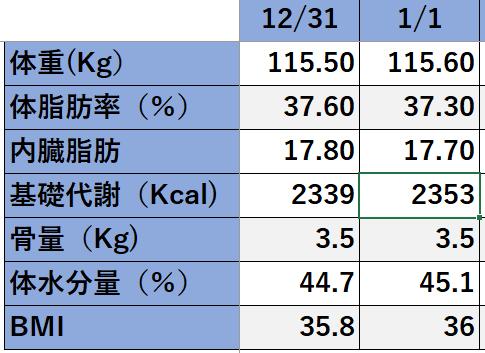 f:id:nicmaru:20190101205830p:plain