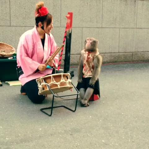 東京タワーで猿回しを見た1