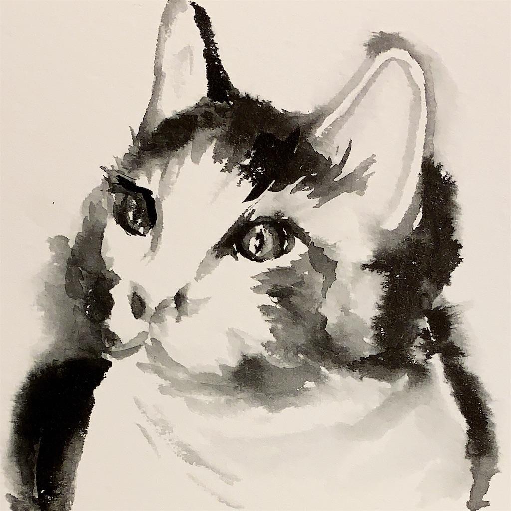 インクトーバー、墨で猫を描く