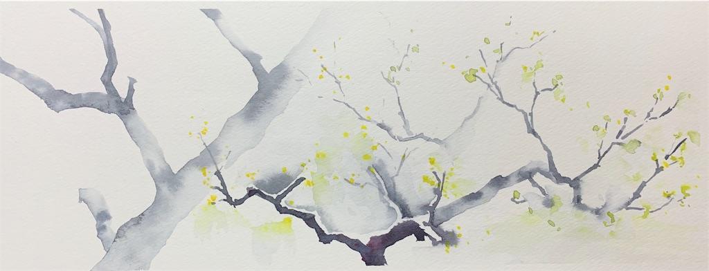 大阪、服部緑地にて梅を水彩でスケッチ