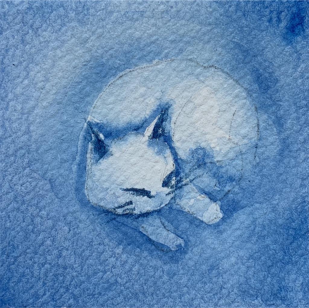 ネコを水彩で描く