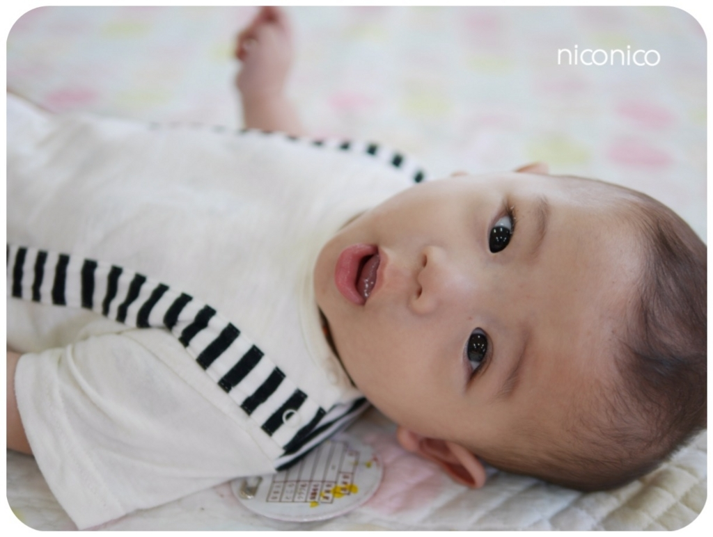 f:id:niconico-smile:20170614163455j:plain