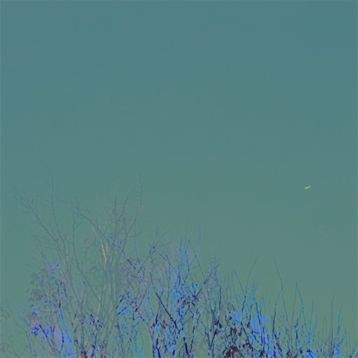 f:id:nicosa:20210208220614j:image