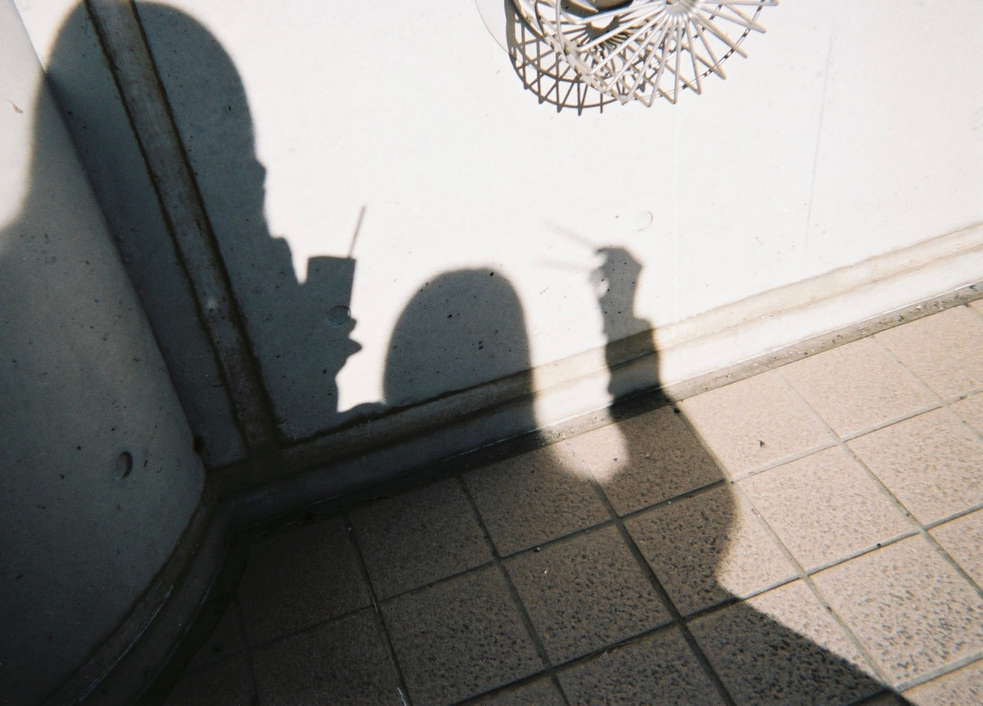 FE、AI Nikkor 35mm f/2.8S