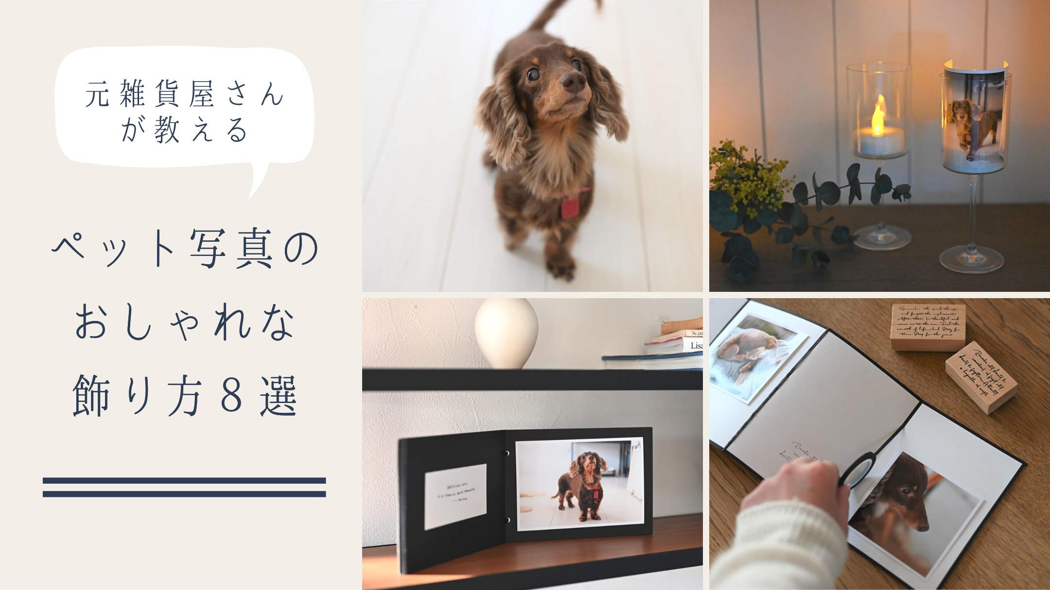 ペット写真のおしゃれな飾り方8選 - 元雑貨屋さんが教えるアイデア帖