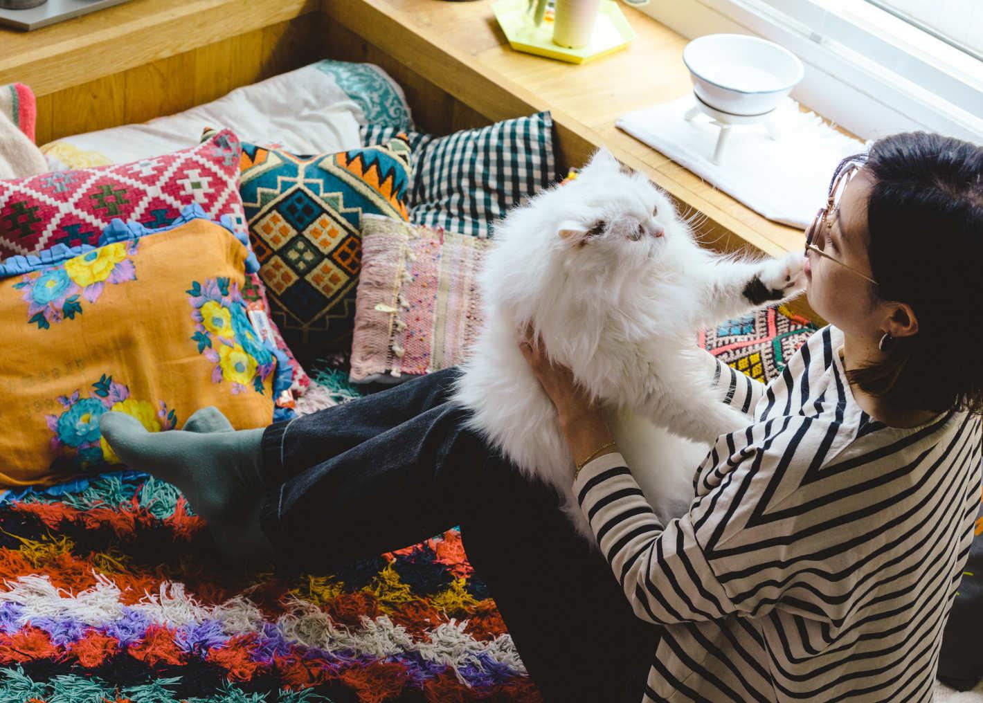 わが家の愛猫「まきゃべり」