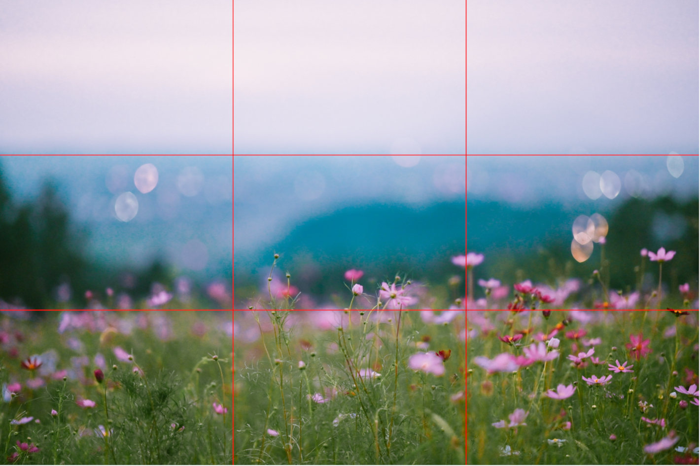 自分らしい風景の撮り方が見つかる! 自然風景の魅力を引き出す6つのヒント