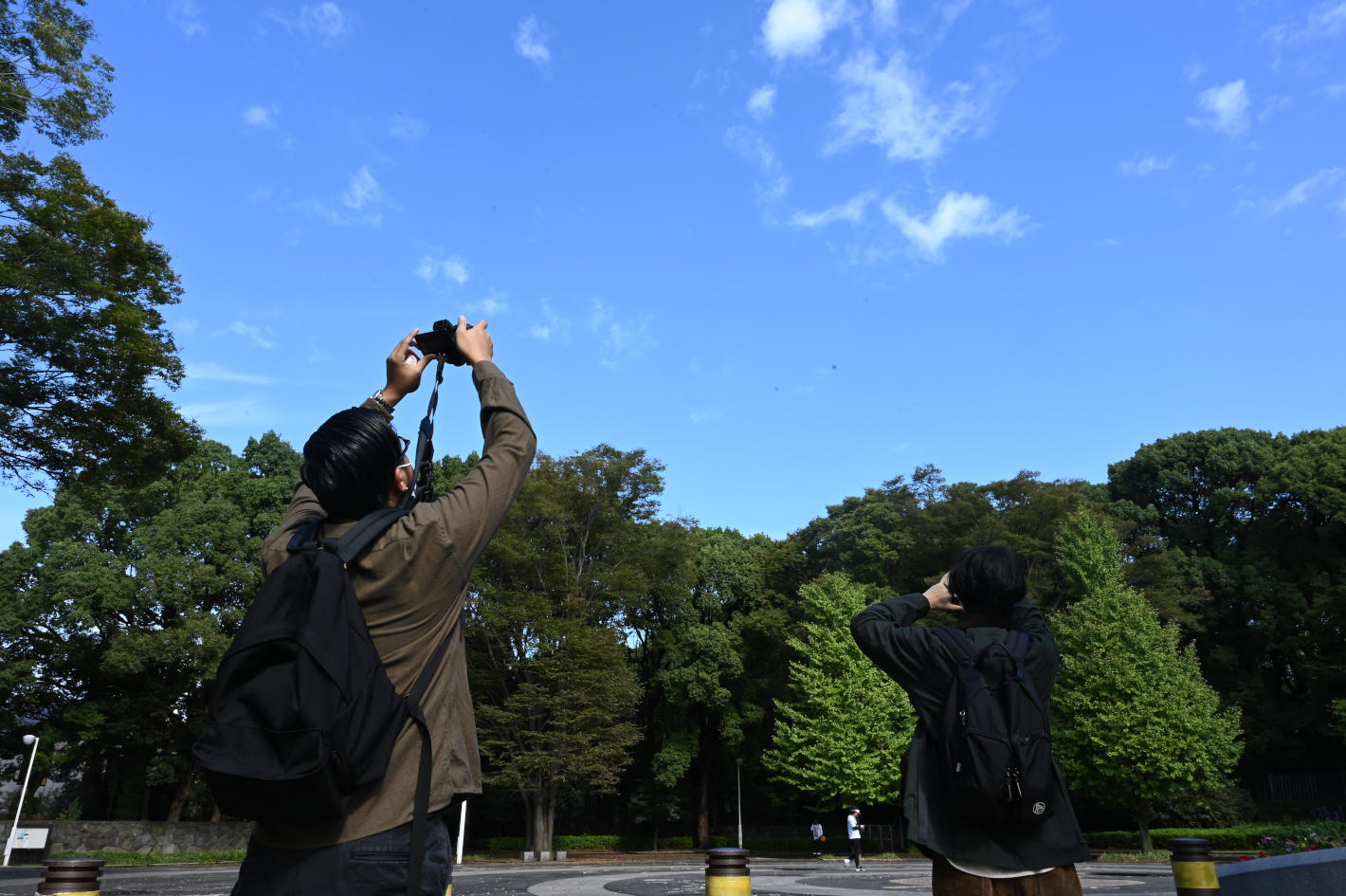 カメラを持って散歩にいこう!いつもの散歩が楽しくなる6つの視点