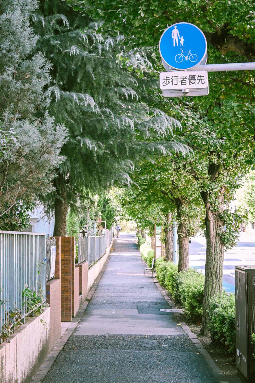 Z 50、NIKKOR Z DX 16-50mm f/3.5-6.3 VR/photo by 嵐田大志
