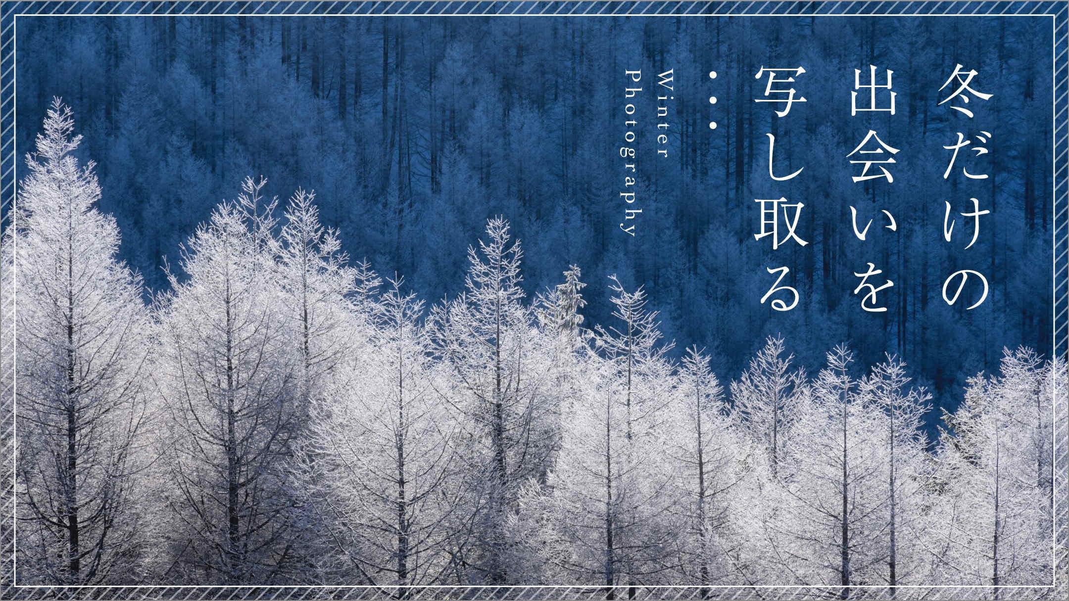 冬にだけ出会える被写体の撮り方 - 雪・風景・光を生かすアイデア6選