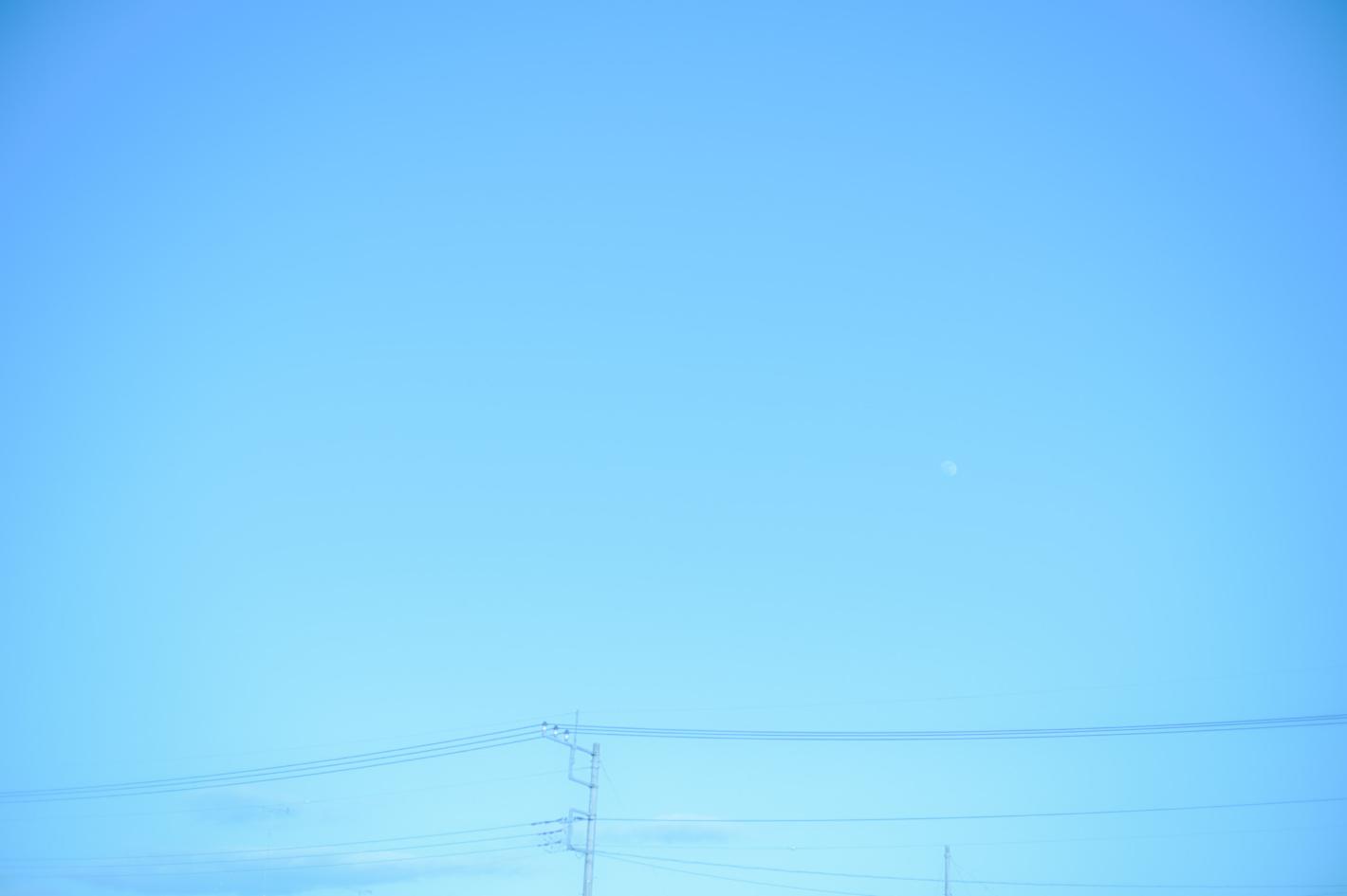 Z 6II、AI Nikkor 50mm f/1.4S