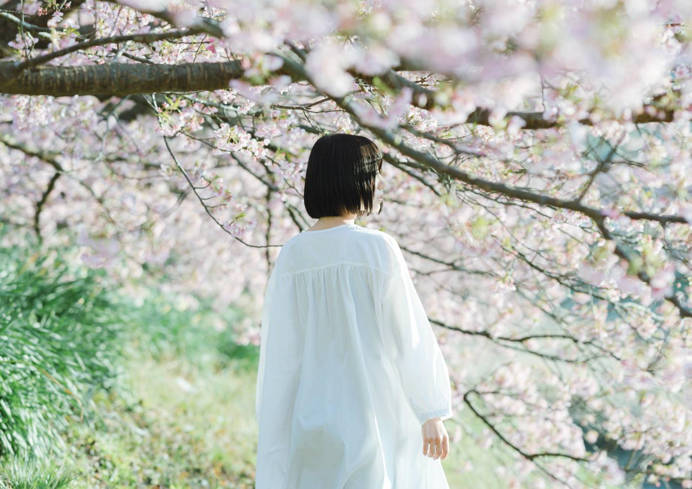 桜ポートレートの基本&応用 – ボケ・アングル・光・構図で広がる表現の10要素