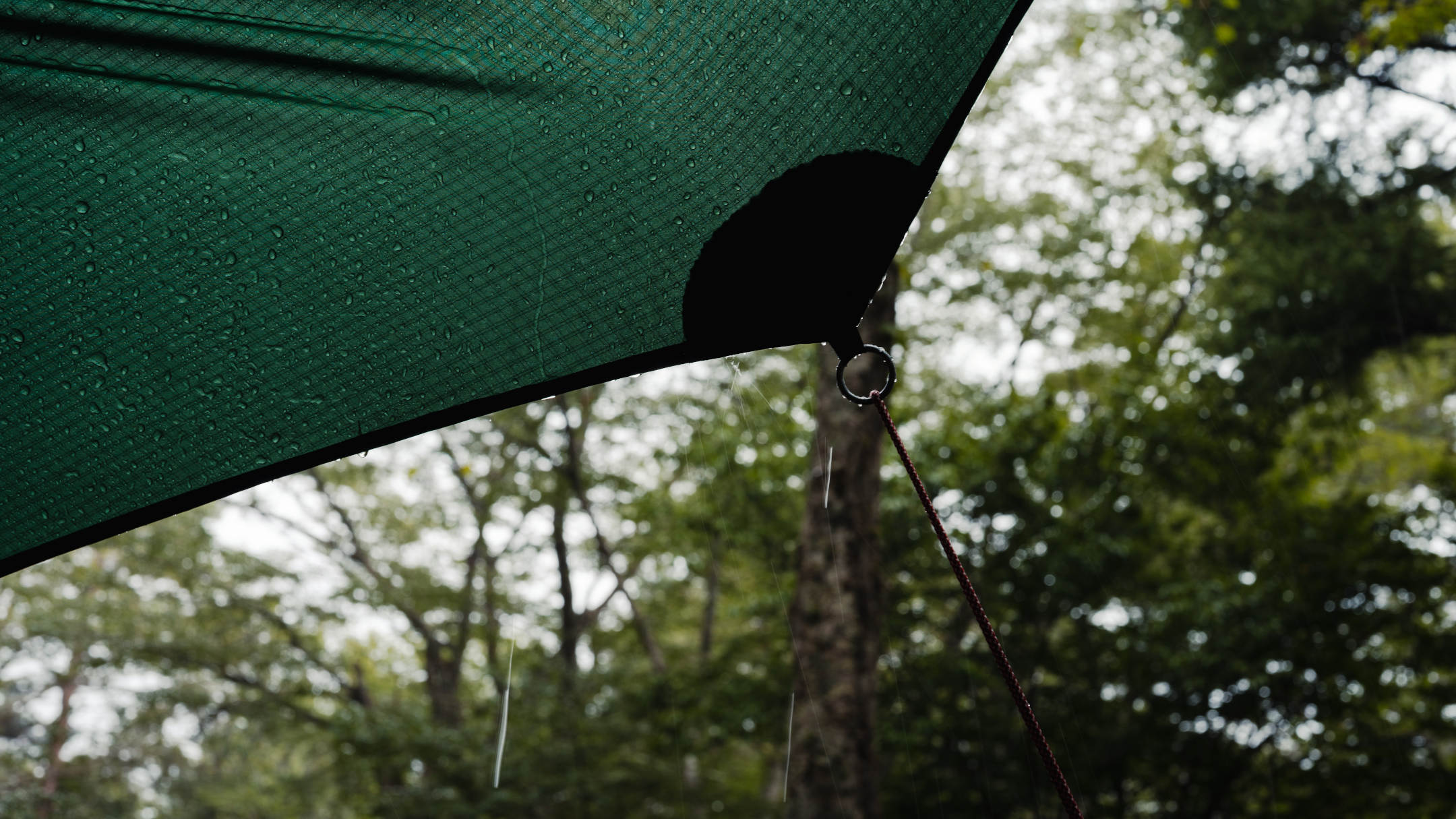 【雨キャンプ】雨でもキャンプ写真は楽しめる!撮影のポイントと雨対策