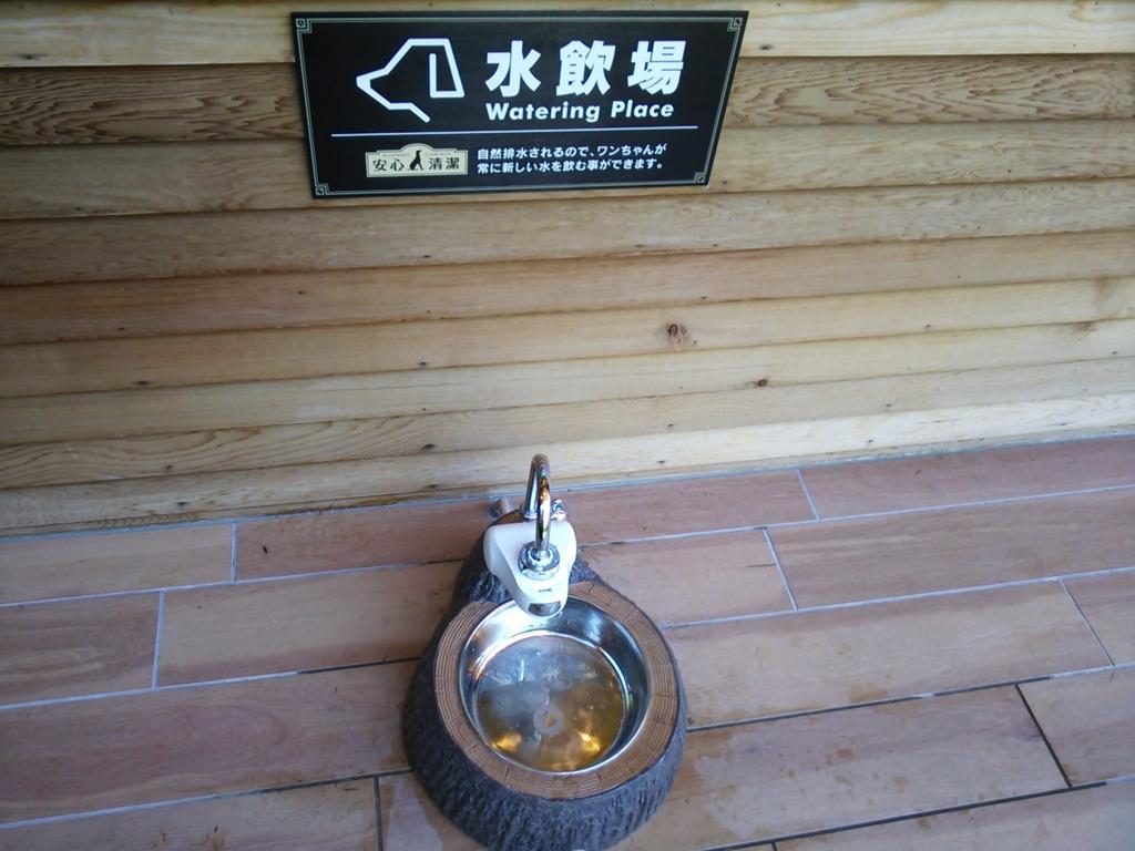 f:id:nicosugi:20160731110559j:plain