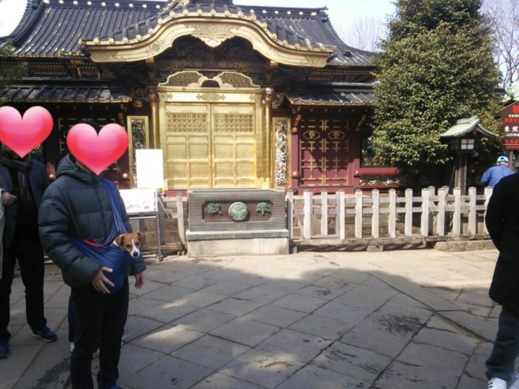 f:id:nicosugi:20170325141113j:plain