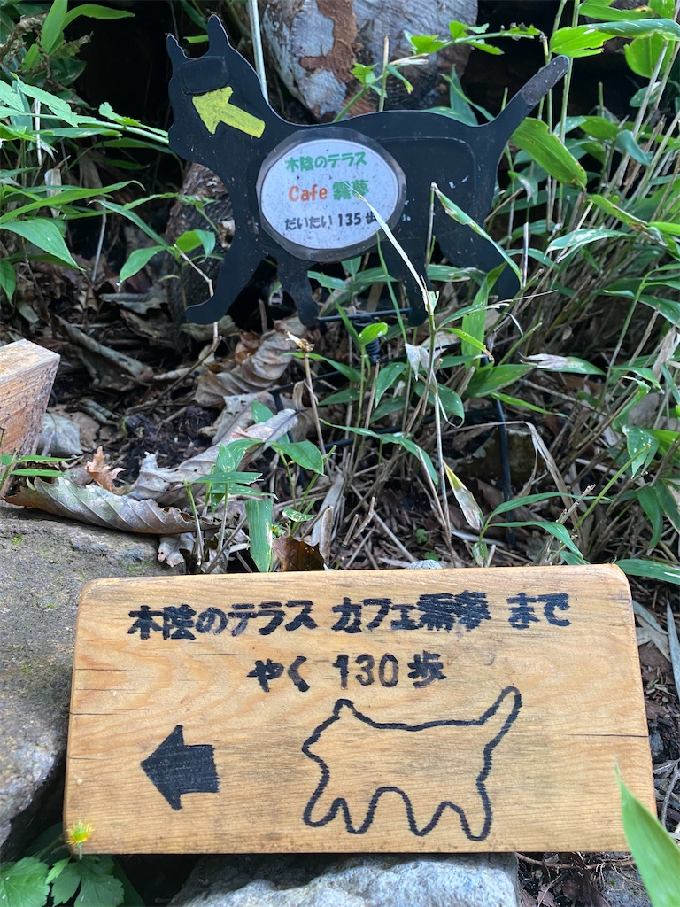 f:id:nicotsubu:20210919081943j:image