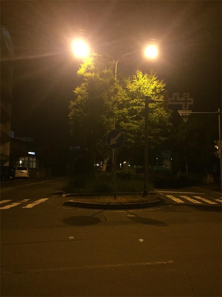 f:id:nidaime-taiyo:20170614214945j:image