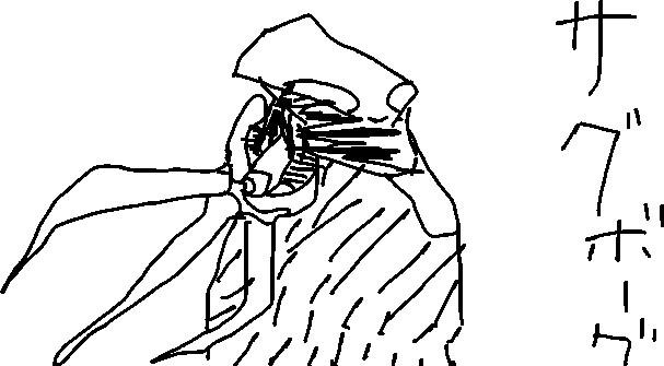 f:id:niguruta:20090530231131j:image:w400