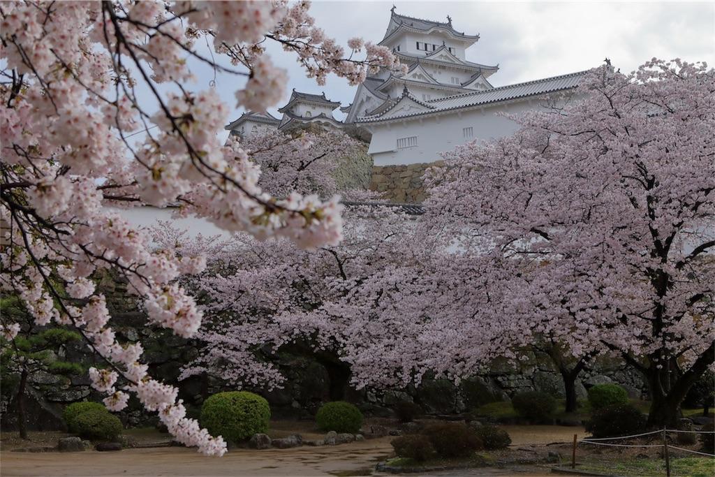 f:id:nihon-kawauso:20170412093820j:image