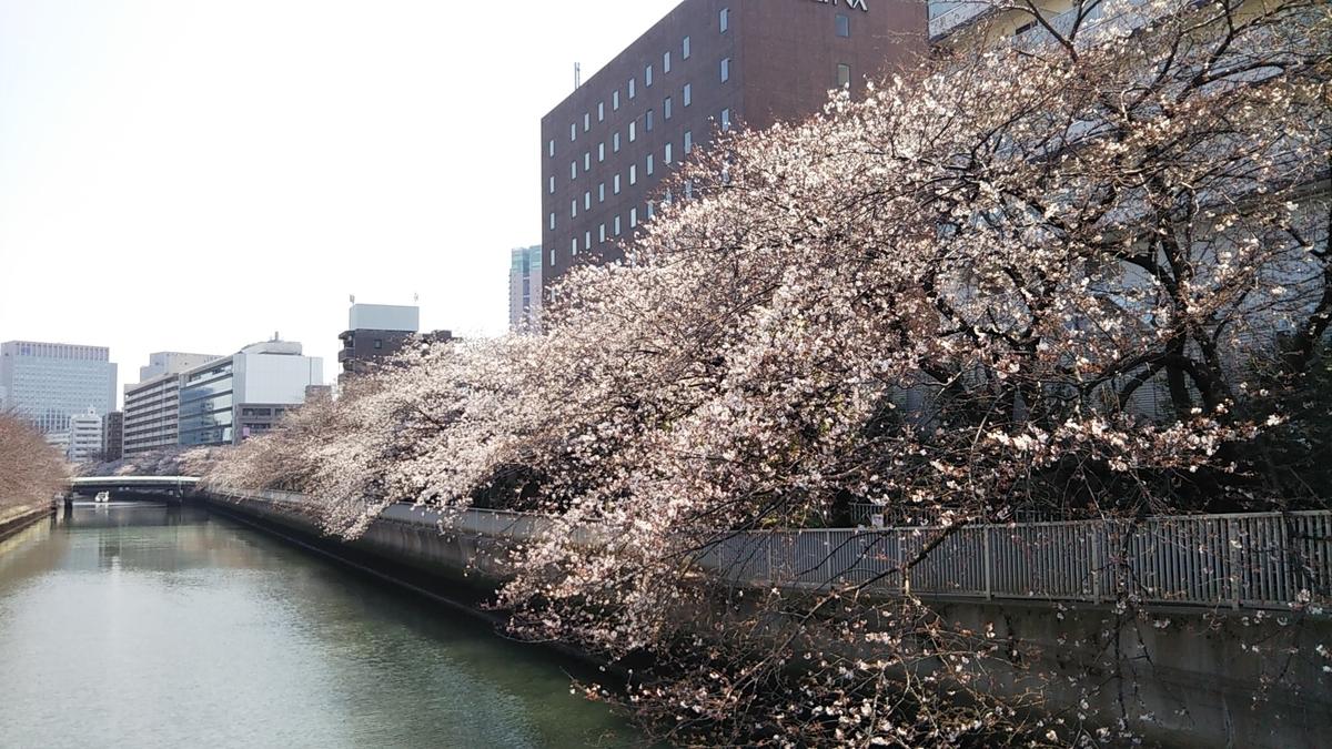 3月26日撮影 石島橋より大横川をのぞむ
