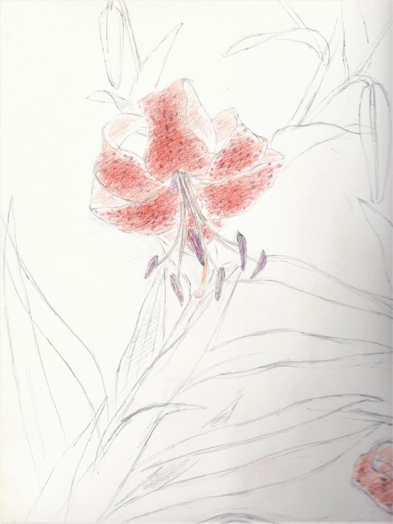 f:id:nihonganomori:20170831182223j:plain