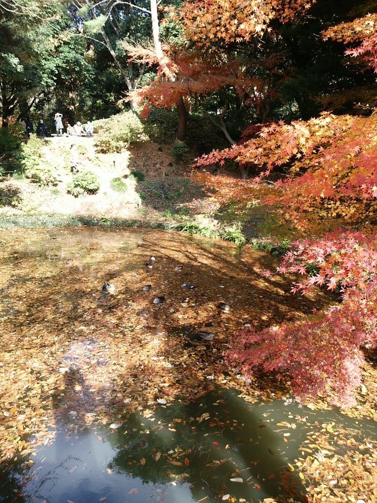 f:id:nihongo1000:20151212123449j:plain