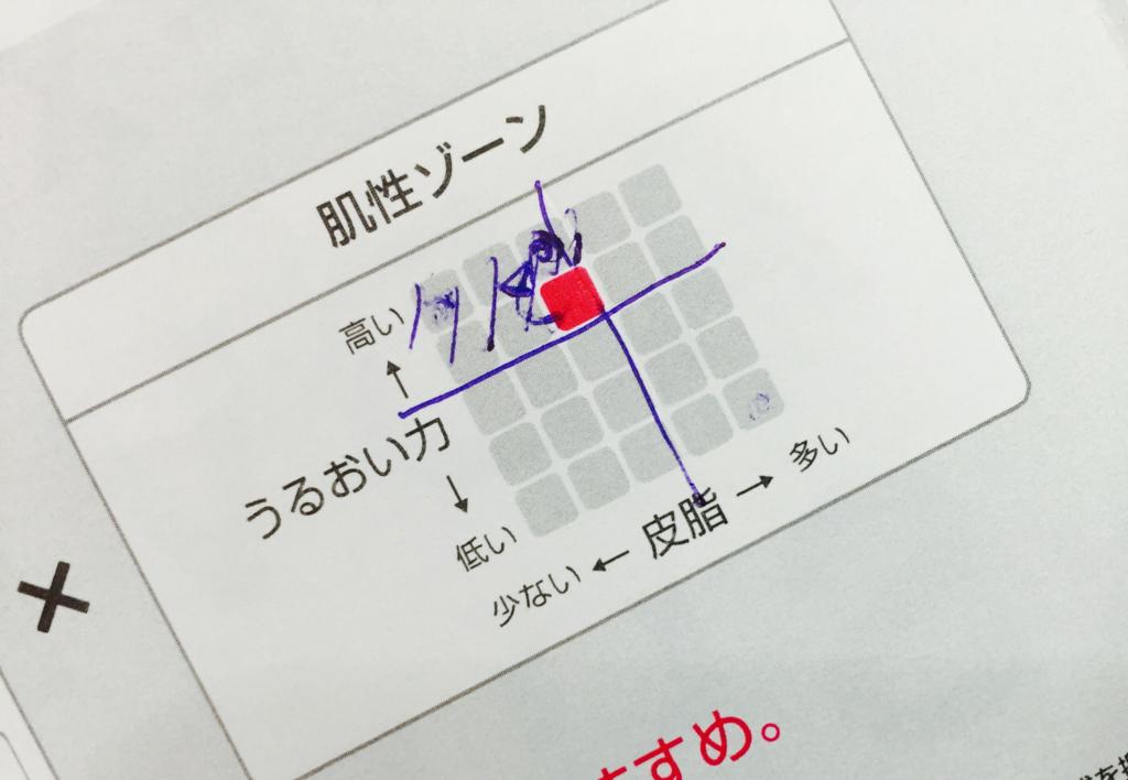 f:id:nihonnokokoro:20161226170923j:plain