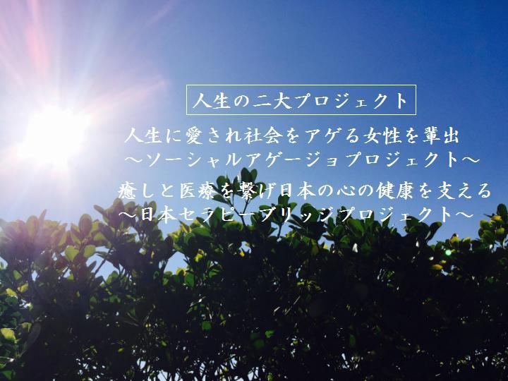 f:id:nihonnokokoro:20170109190938j:plain