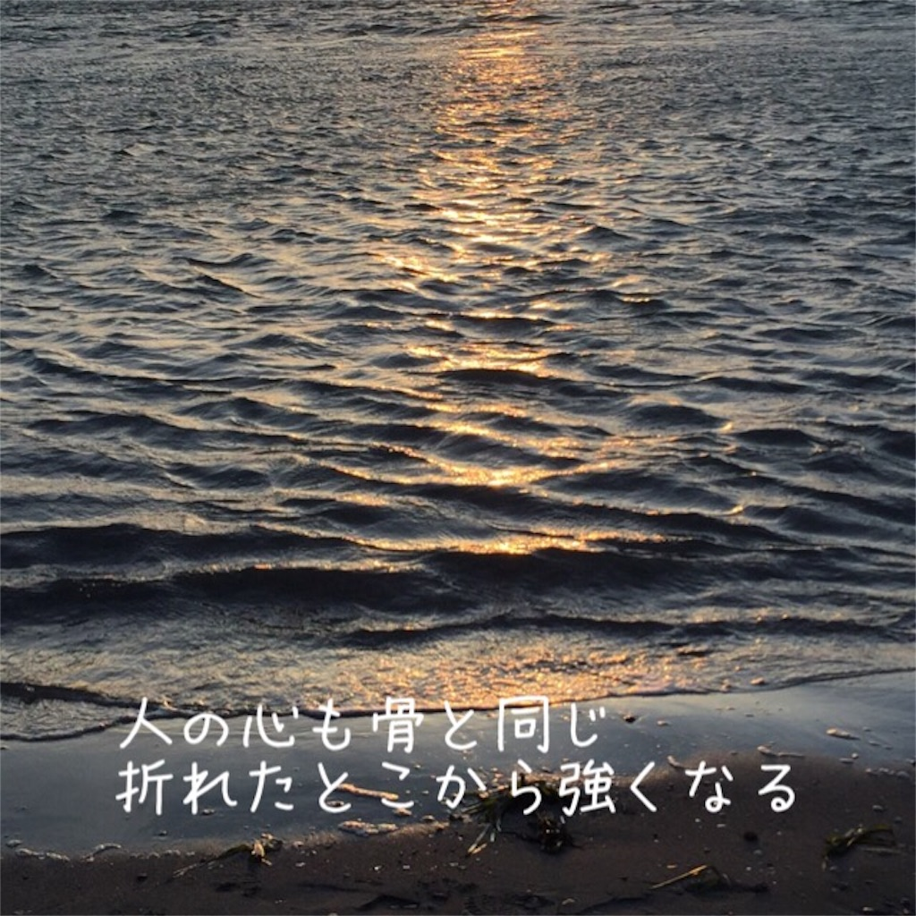 f:id:nihonnokokoro:20170228084720j:image
