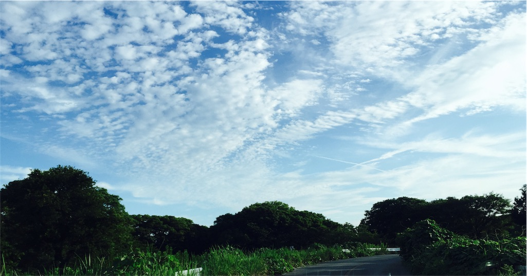 f:id:nihonnokokoro:20170724180236j:image