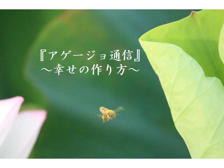 f:id:nihonnokokoro:20170807180713j:plain