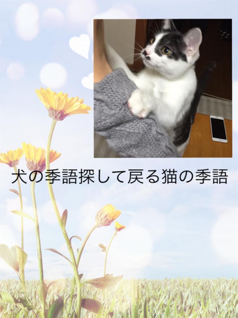 f:id:nihonnokokoro:20180115163648p:image