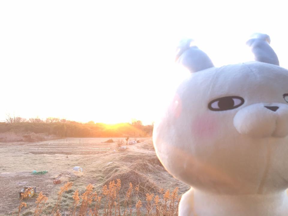 f:id:nihonnokokoro:20180203174315j:plain