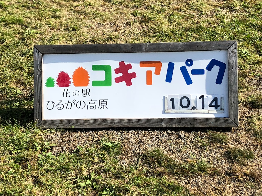 f:id:nihonnokokoro:20181014174517j:image