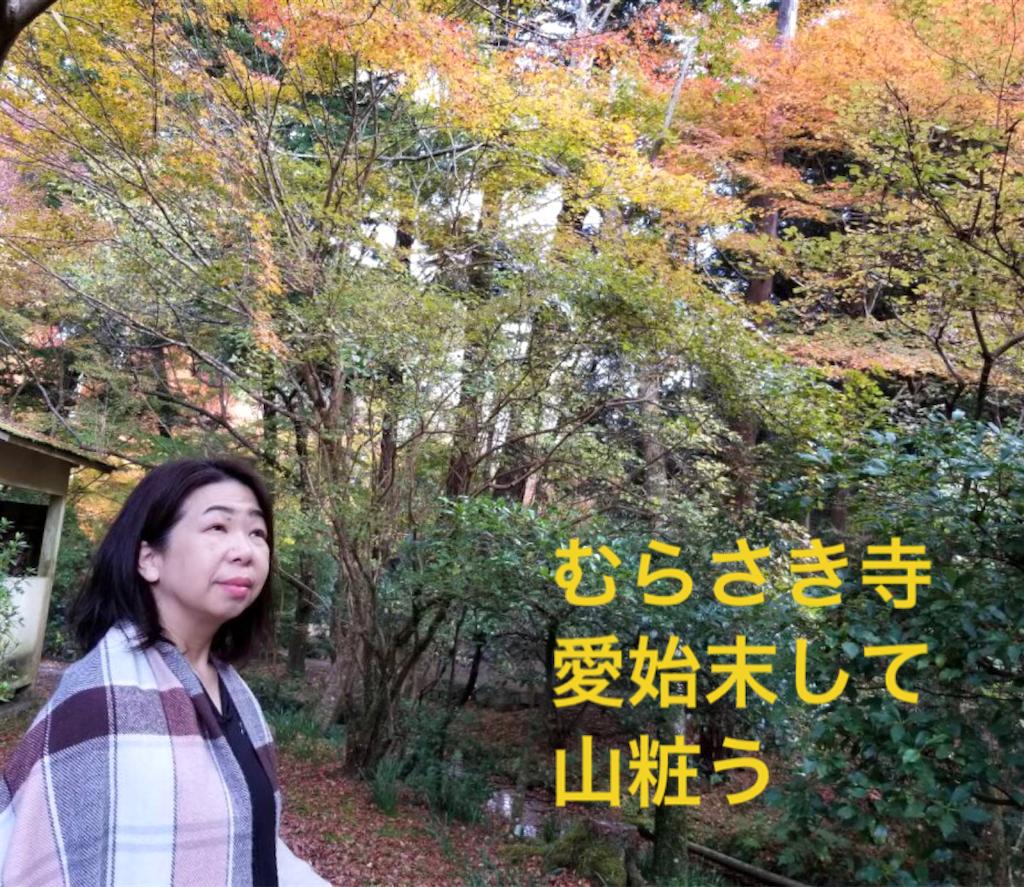 f:id:nihonnokokoro:20181125194126p:image
