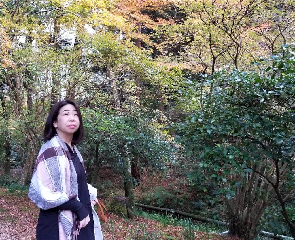 f:id:nihonnokokoro:20181202044657j:image