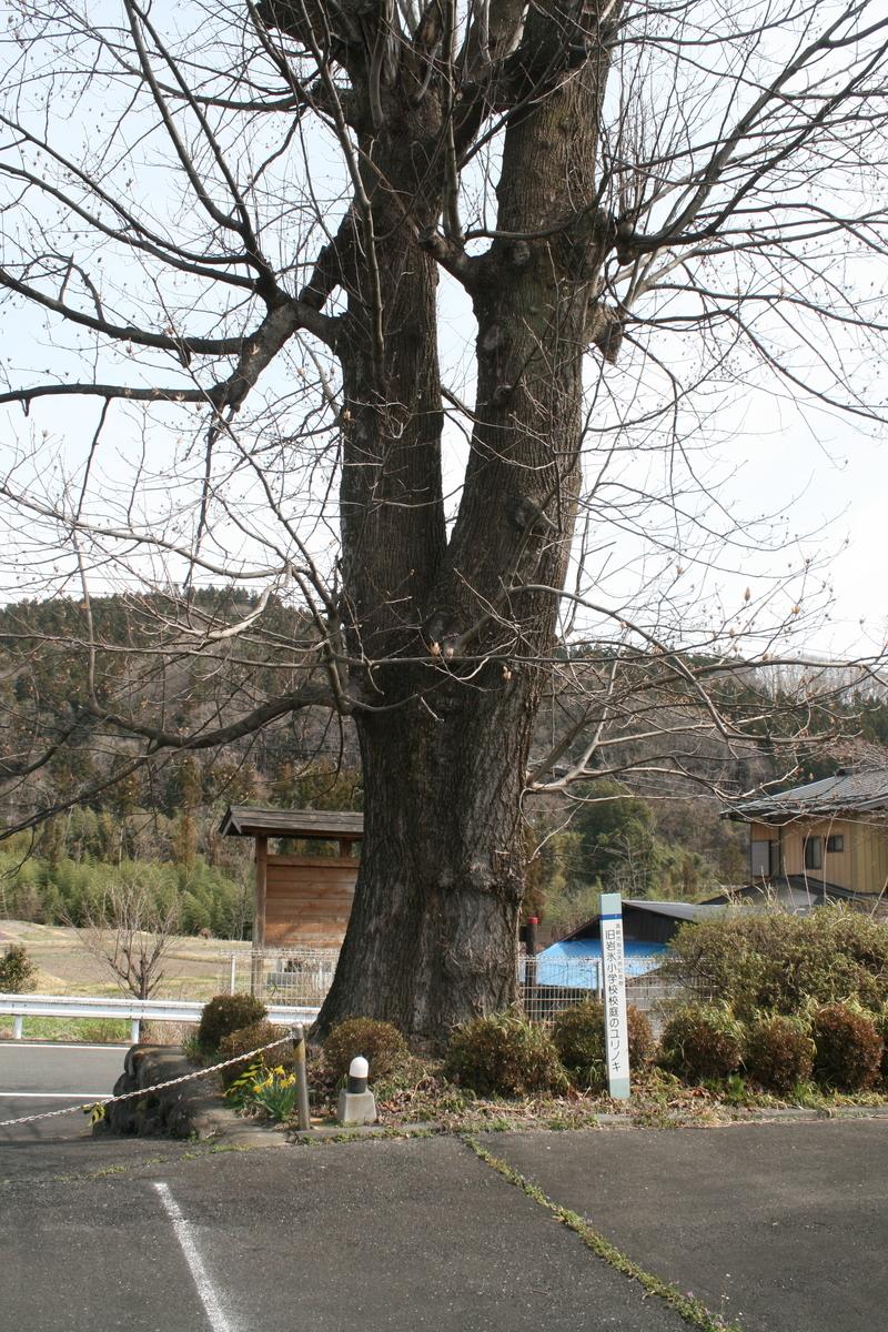 f:id:nihonshiseki:20210414124158j:plain