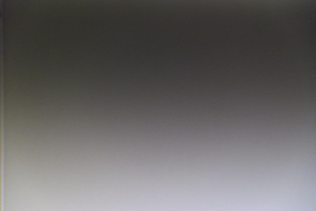 f:id:nii-kuma-ya:20210207231406j:plain