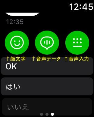 f:id:nii-tsuyo:20180509133043j:plain